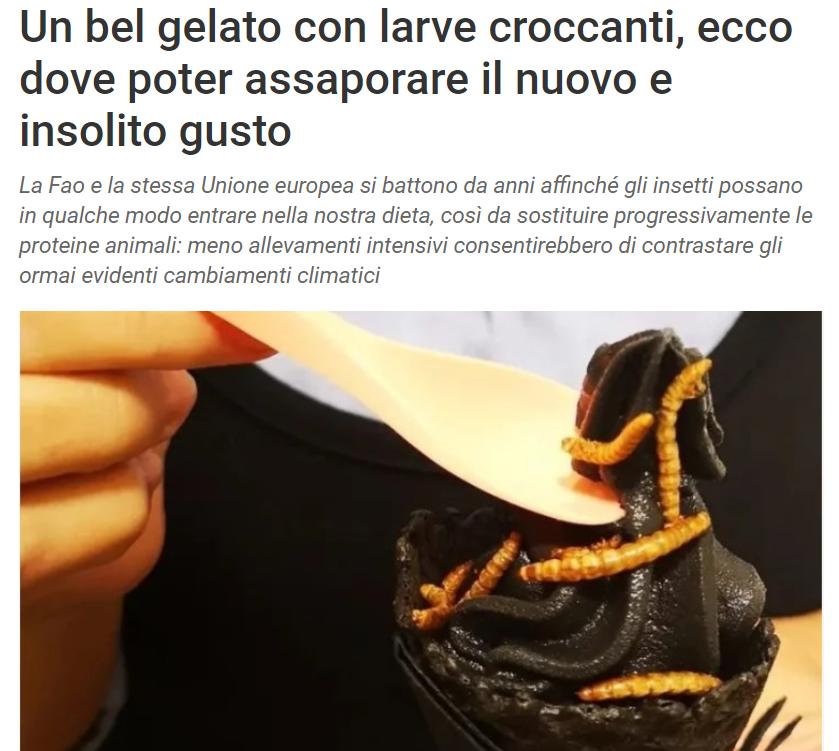 Ambiente Tiscali - Un bel gelato con larve croccanti, ecco dove poter assaporare il nuovo e insolito gusto... Myiced